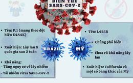 [Infographic] - Các biến thể mới của virus SARS-CoV-2 có gì nguy hiểm