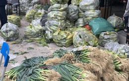 Hà Nội sẽ giám sát, truy xuất nguồn gốc nông sản từ Hải Dương