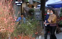 Hà Nội: Chợ hoa cổ Hàng Lược đìu hiu vì COVID-19