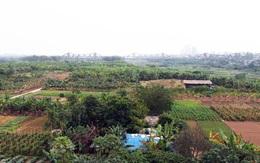 Quy hoạch phân khu đô thị sông Hồng: Người lo, người ngóng