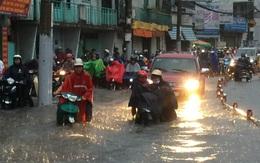 TP.HCM tập trung xử lý 433 khu vực trọng điểm ngập lụt trong mùa mưa