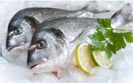 Đây là thời hạn bạn có thể bảo quản cá tươi và cá đã nấu chín trong tủ lạnh