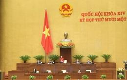 Quốc hội bắt đầu thực hiện quy trình nhân sự Nhà nước, Chính phủ, Quốc hội