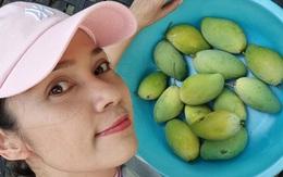 Cùng Việt Trinh thu hoạch quả, rau trong vườn rộng 2.500m2 của nữ diễn viên