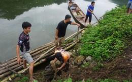 Thanh Hóa: Đã phát hiện 1 công ty xả thải trái phép ra sông Mã khiến cá chết hàng loạt