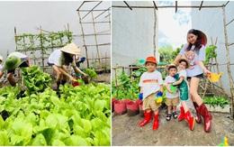 Kiếm 2 tỷ/1 tháng Hải Băng Thành Đạt vẫn tự trồng rau xanh ngắt để nuôi 3 con