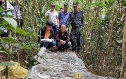 Mất mạng vì tin lời thầy cúng rởm mang 16kg bạc vào rừng làm lễ giải hạn