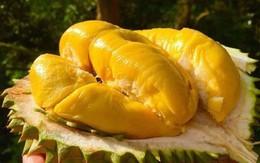 Cơ quan nội tạng của bạn thích nhất và sợ nhất những loại trái cây này, ăn sai cách có thể gây hại cơ thể