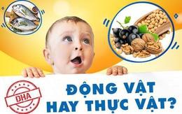 Mẹ cần biết: Sự thật không ngờ về DHA từ động vật và DHA từ thực vật