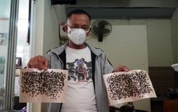 Người Hải Phòng sống khốn khổ vì ruồi từ bãi rác tràn vào nhà