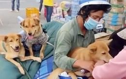 Tin sáng 27/10: Tin vui lớn của người dân khi vào TP.HCM, Hà Nội; cuộc sống hiện tại của chủ nhân 15 con chó bị tiêu hủy như thế nào?