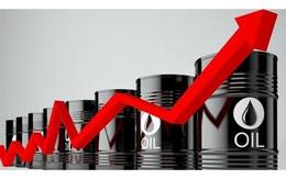 Giá xăng dầu tăng ra sao trong 12 tháng qua