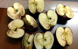 3 loại trái cây nằm trong 'danh sách đen' có thể nuôi dưỡng tế bào ung thư