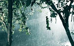 Thảm án lúc nửa đêm, kỳ 1: Bóng người trong cơn bão