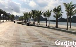 Hình ảnh những ngày trong dịch COVID-19 ở Hải Phòng, Quảng Ninh