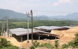 """Nhiều dự án trang trại điện mặt trời tại Hà Tĩnh ngang nhiên """"lách luật"""" để hưởng giá bán điện ưu đãi của Chính phủ(?!)"""
