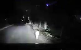 Tài xế kể về nguyên nhân hi hữu khiến bé 2 tuổi lang thang một mình giữa đường lúc 1 giờ sáng
