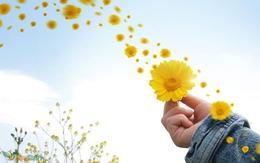 Để yêu một người thì chỉ cần có duyên là đủ, nhưng để tiếp tục yêu thì phải cố gắng mới hạnh phúc