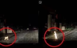 Lời nhắn gửi tận đáy lòng của tài xế giúp cháu bé chạy ra đường lúc 1 giờ sáng và những tình huống xảy ra giữa đêm khiến người đi đường thót tim