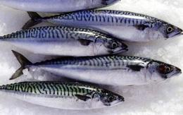 9 lợi ích không ngờ của cá thu và rủi ro bạn phải đối mặt nếu ăn sai cách