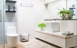 Bất ngờ với cách nhìn vào toilet biết chủ nhà đang hạnh phúc, hay khổ đau