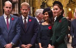 Báo Anh: 'Meghan sẽ không tới London dự khánh thành tượng Diana'