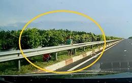 3 bé trai đứng sát dải phân cách, ném đá vào ô tô đang chạy trên cao tốc