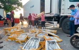 """Ngư dân Quảng Bình lao đao vì cá đặc sản xuất khẩu ùn ứ, phải bán giá """"bèo"""""""