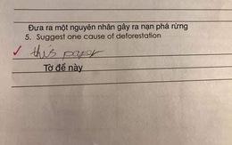 """Đề kiểm tra hỏi """"Nguyên nhân gây phá rừng"""", học sinh viết đúng 2 từ mà giáo viên nhưng vẫn phải cho điểm!"""