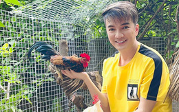 Đàm Vĩnh Hưng hé lộ góc vườn trồng cây và nuôi gà