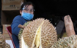 Sầu riêng Đắk Lắk rớt giá kỷ lục