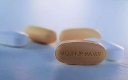 TP.HCM chính thức sử dụng thuốc kháng virus Molnupiravir cho bệnh nhân COVID-19