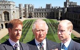 Hành động đổ lỗi cho bố và anh trai của Hoàng tử Harry khiến dân mạng phẫn nộ