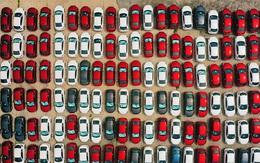 Hàng trăm ôtô mới cứng nằm phơi nắng hơn 30 ngày giãn cách ở Hà Nội