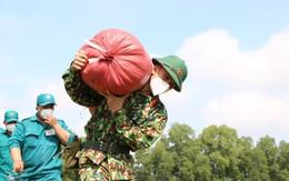 Những hình ảnh ấn tượng bộ đội giúp người dân thu hoạch lúa