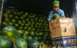 Tiểu thương gặp khó vì chợ đầu mối ở Hà Nội bị phong tỏa
