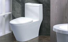 Cần vệ sinh thường xuyên chỗ đặc biệt này của bồn cầu nếu không muốn gây hại tới sức khỏe của bạn