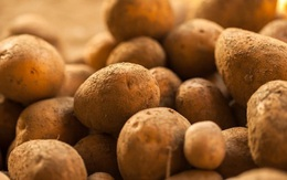 4 loại rau củ nghe tên thì rất quen thuộc nhưng nhà không có điều kiện thì đừng nghĩ đến việc mua ăn hằng ngày