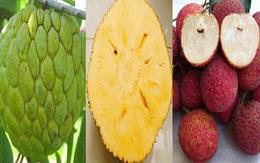 5 loại trái cây không hạt 'làm mưa làm gió' trên thị trường