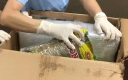 Giấu 4,6 kg ma túy trong sứa biển, cá khô