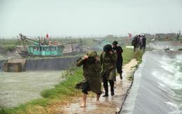 """Bão số 5 """"quét"""" miền Đông tỉnh Quảng Ninh"""