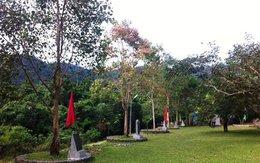 Sự trùng hợp kỳ lạ của cây bồ đề Đại tướng Võ Nguyên Giáp tại Yên Tử