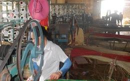 Nga Sơn, Thanh Hóa: Nhìn vào cói, đói quanh năm