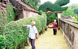 Chăm sóc, phát huy thế mạnh của người cao tuổi: 90 triệu và 9 triệu
