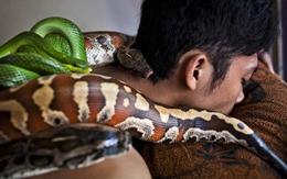 """Rợn người xem massage bằng rắn """"sung sướng trong sợ hãi"""""""