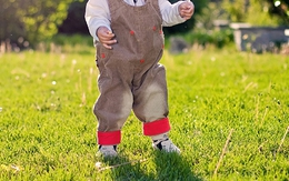 Cây bồ công anh mọc trong tai em bé 1 tuổi