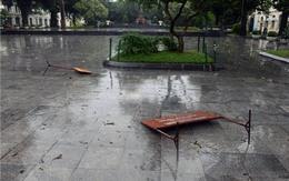 Hà Nội xáo trộn vì bão Haiyan