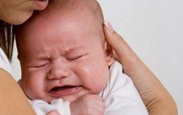 Bầu sắp làm mẹ, nuôi con thế nào?