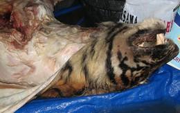 Cao hổ cốt làm từ thuốc phiện và xương chó