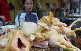 Rùng mình thịt gà chứa kháng sinh, gạo nhiễm hóa chất tê liệt thần kinh